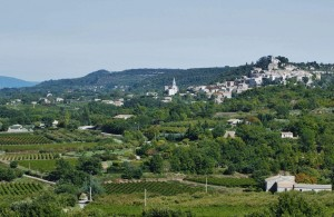 View of the village perche of Bonnieux with the vine covered valley below.